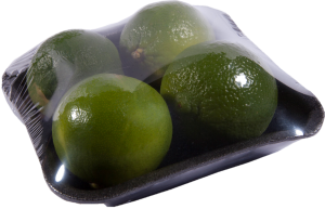 Foodtainer Limes
